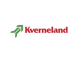 Диск бороны (гладкий) Kverneland RF28474  (GREGOIRE BESSON 851001098)